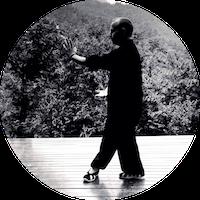 Qi Gong des 6 harmonies et 5 éléments
